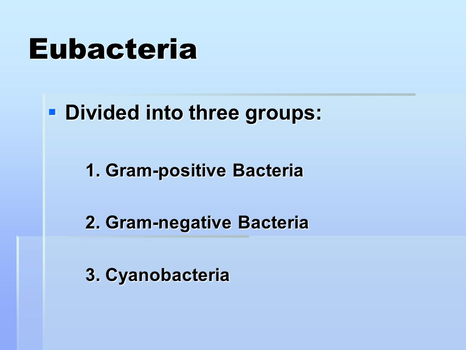 Eubacteria  Divided into three groups: 1. Gram-positive Bacteria 2.