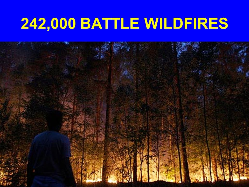 242,000 BATTLE WILDFIRES