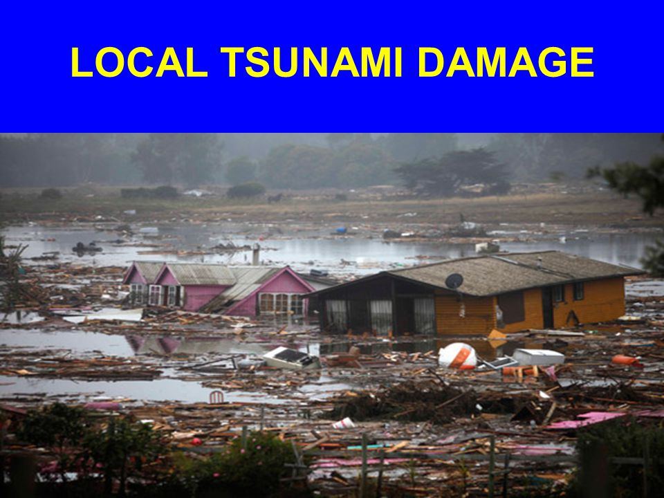 LOCAL TSUNAMI DAMAGE