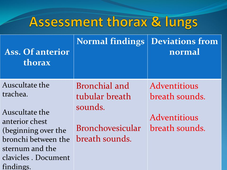 Ass. Of anterior thorax Normal findingsDeviations from normal Auscultate the trachea. Auscultate the anterior chest (beginning over the bronchi betwee