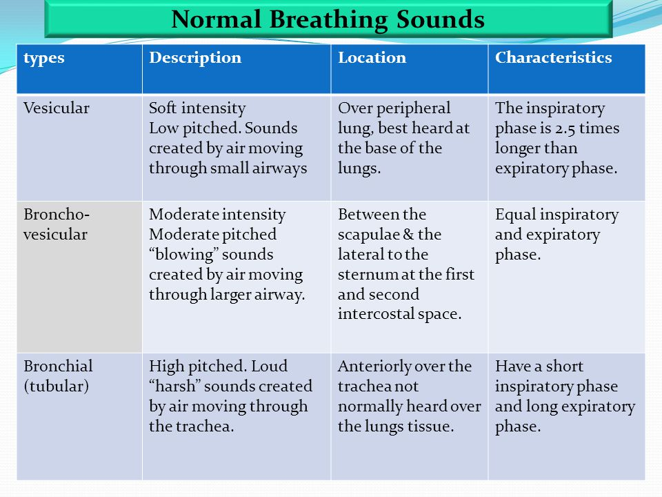 typesDescriptionLocationCharacteristics VesicularSoft intensity Low pitched. Sounds created by air moving through small airways Over peripheral lung,