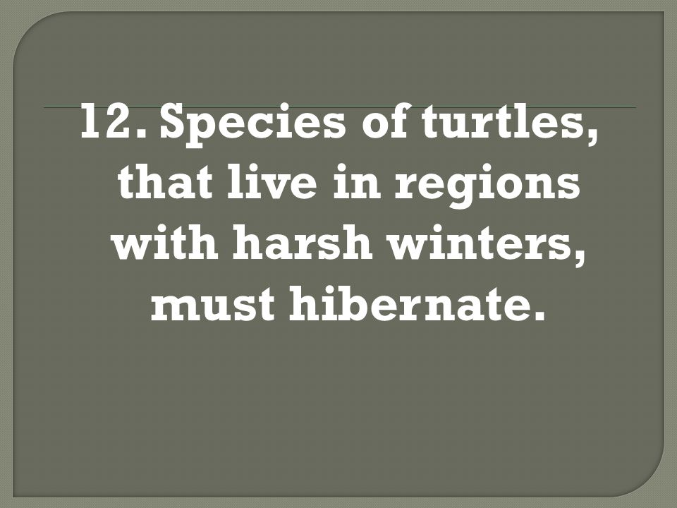 12. Species of turtles, that live in regions with harsh winters, must hibernate.