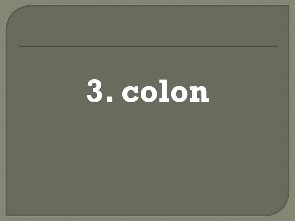 3. colon