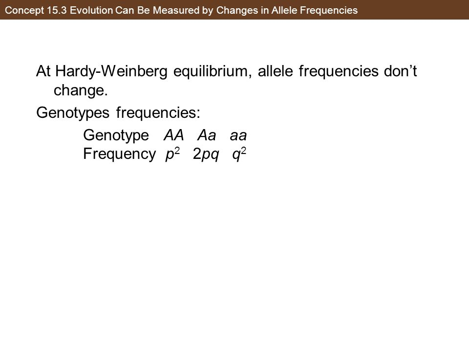 Concept 15.3 Evolution Can Be Measured by Changes in Allele Frequencies At Hardy-Weinberg equilibrium, allele frequencies don't change. Genotypes freq
