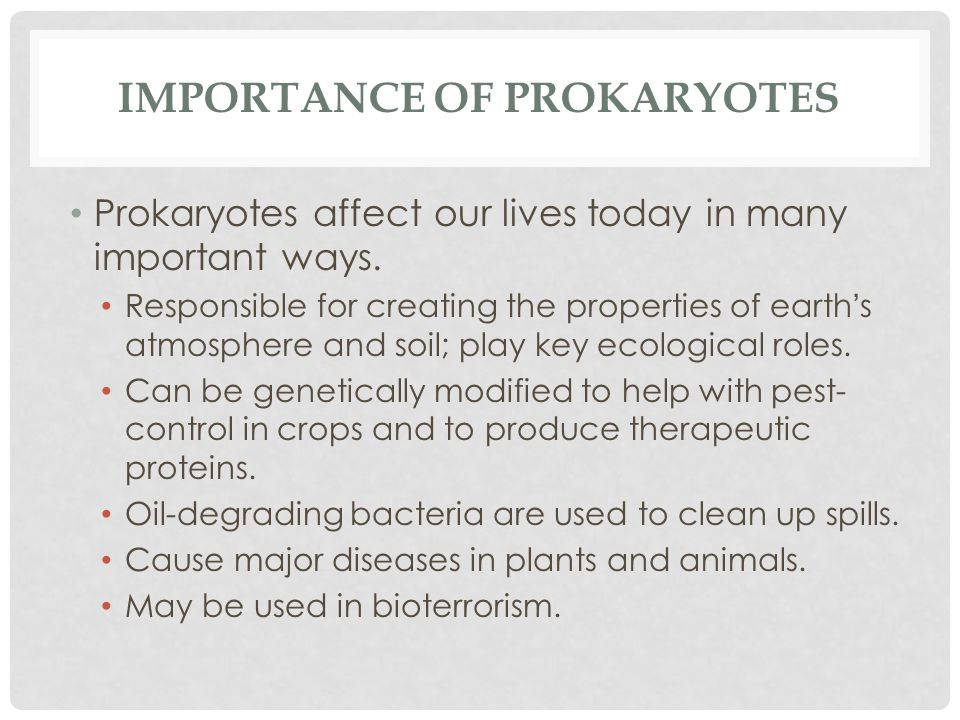 IMPORTANCE OF PROKARYOTES Prokaryotes affect our lives today in many important ways. Responsible for creating the properties of earth ' s atmosphere a