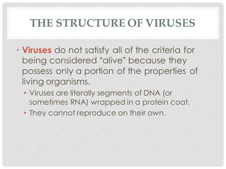 """THE STRUCTURE OF VIRUSES Viruses do not satisfy all of the criteria for being considered """" alive """" because they possess only a portion of the properti"""