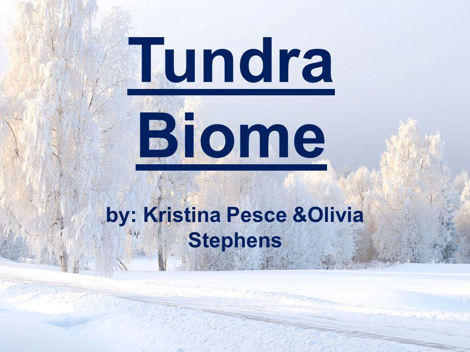 Tundra Biome by: Kristina Pesce &Olivia Stephens