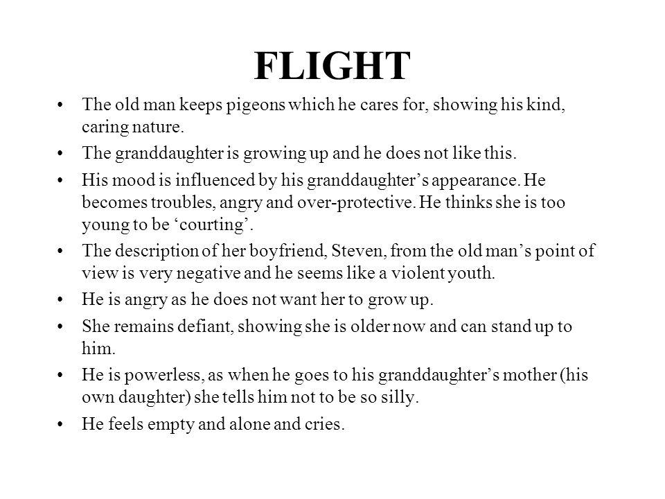 essays on flight by doris lessing