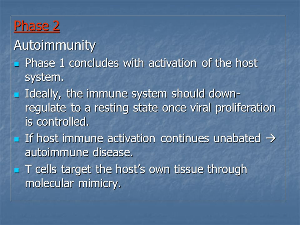 Phase 2 Autoimmunity Phase 1 concludes with activation of the host system.