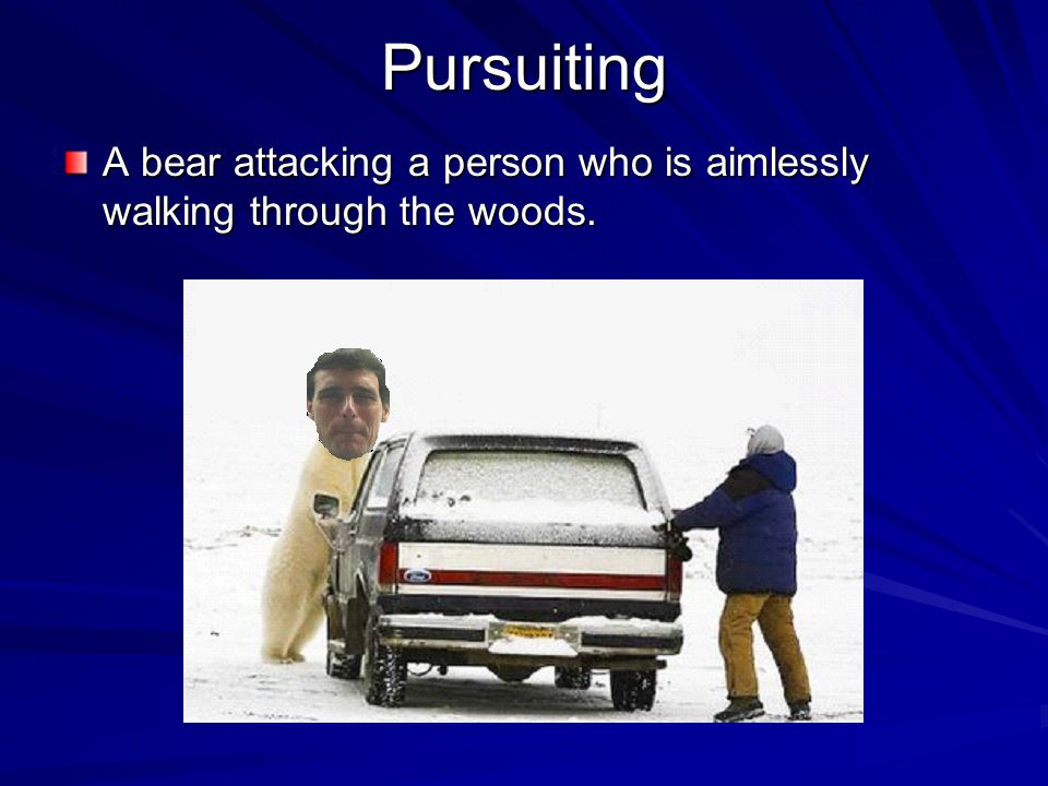 Pursuiting A bear attacking a person who is aimlessly walking through the woods.