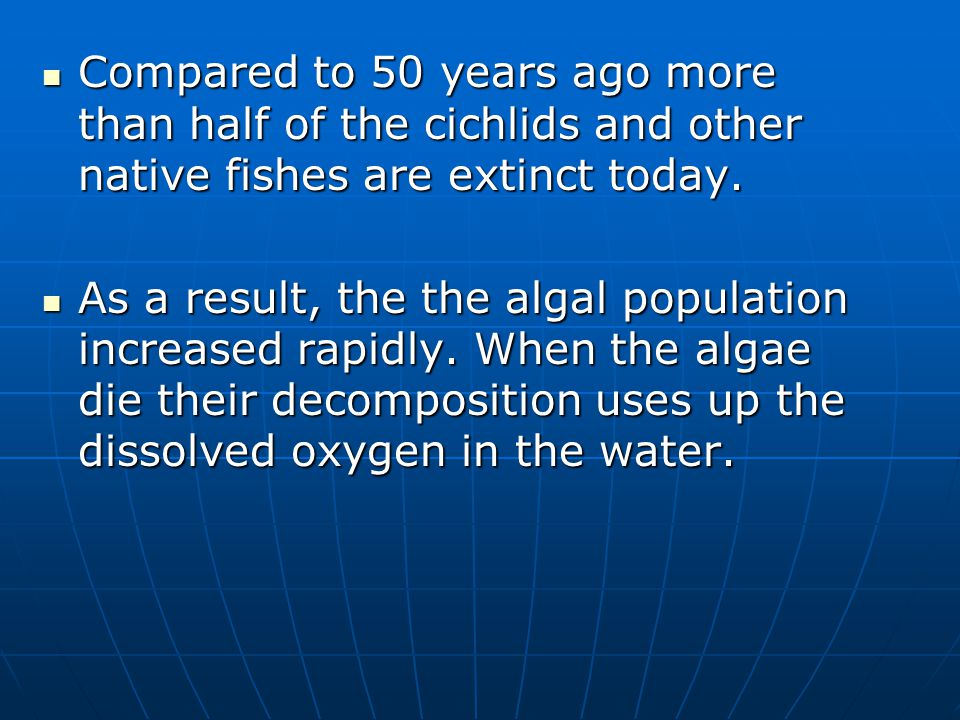 Compared to 50 years ago more than half of the cichlids and other native fishes are extinct today.