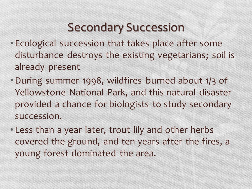 Secondary Succession Ecological succession that takes place after some disturbance destroys the existing vegetarians; soil is already present During summer 1998, wildfires burned about 1/3 of Yellowstone National Park, and this natural disaster provided a chance for biologists to study secondary succession.