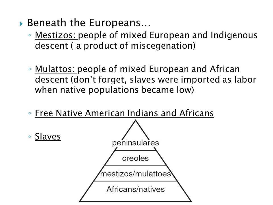  Beneath the Europeans… ◦ Mestizos: people of mixed European and Indigenous descent ( a product of miscegenation) ◦ Mulattos: people of mixed European and African descent (don't forget, slaves were imported as labor when native populations became low) ◦ Free Native American Indians and Africans ◦ Slaves