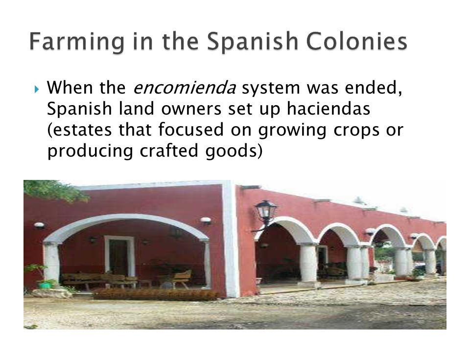 When the encomienda system was ended, Spanish land owners set up haciendas (estates that focused on growing crops or producing crafted goods)