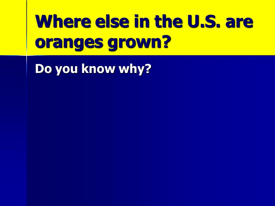 Where else in the U.S. are oranges grown? Do you know why?