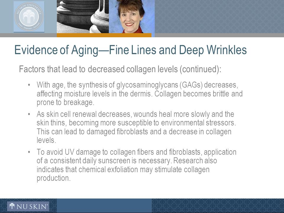 Evidence of Aging—Fine Lines and Deep Wrinkles Factors that lead to decreased collagen levels (continued): With age, the synthesis of glycosaminoglycans (GAGs) decreases, affecting moisture levels in the dermis.