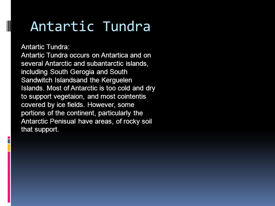 Tundra Tundra is found in Arctic Tundra, Alphine Tundra, and Antarctic Tundra.