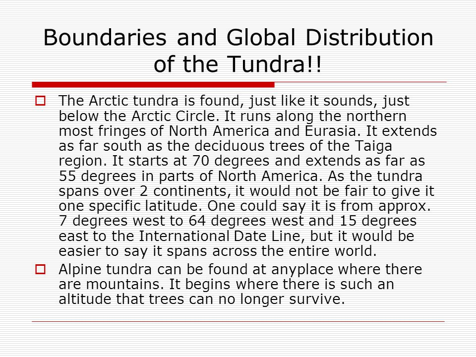 Boundaries and Global Distribution of the Tundra!!  The Arctic tundra is found, just like it sounds, just below the Arctic Circle. It runs along the