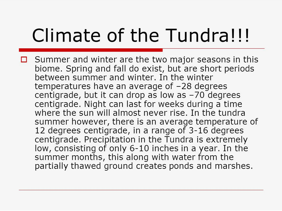 Climate of the Tundra!!!  Summer and winter are the two major seasons in this biome. Spring and fall do exist, but are short periods between summer a