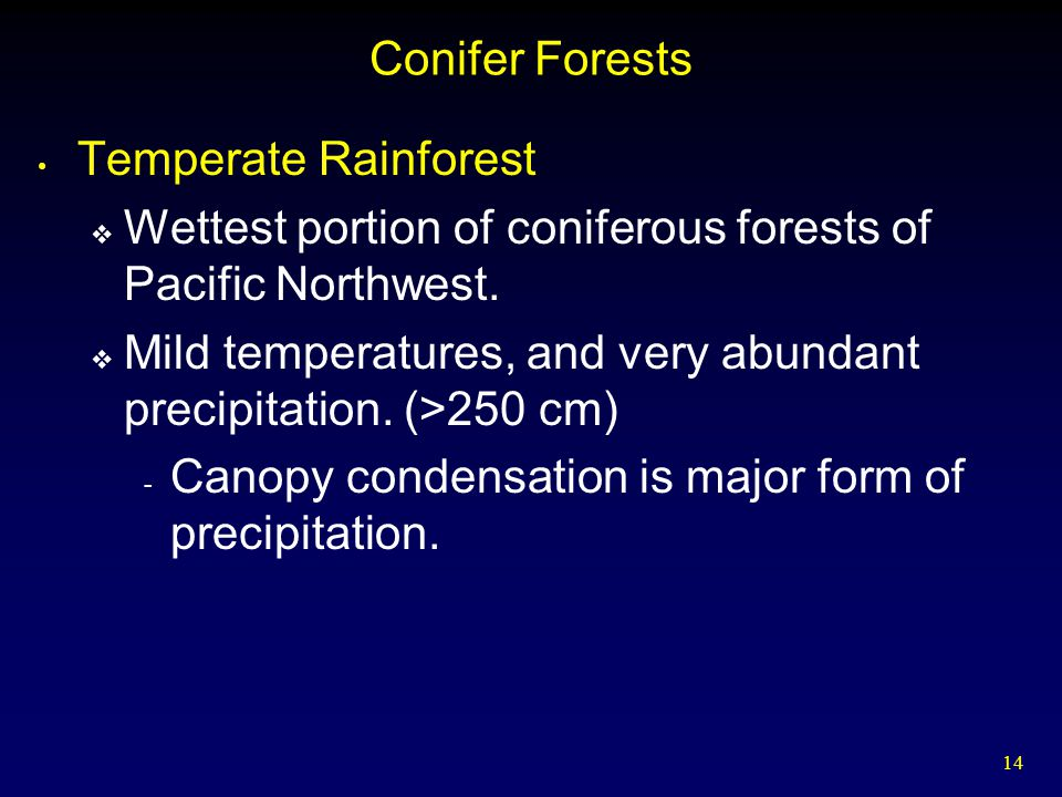 14 Conifer Forests Temperate Rainforest  Wettest portion of coniferous forests of Pacific Northwest.  Mild temperatures, and very abundant precipita