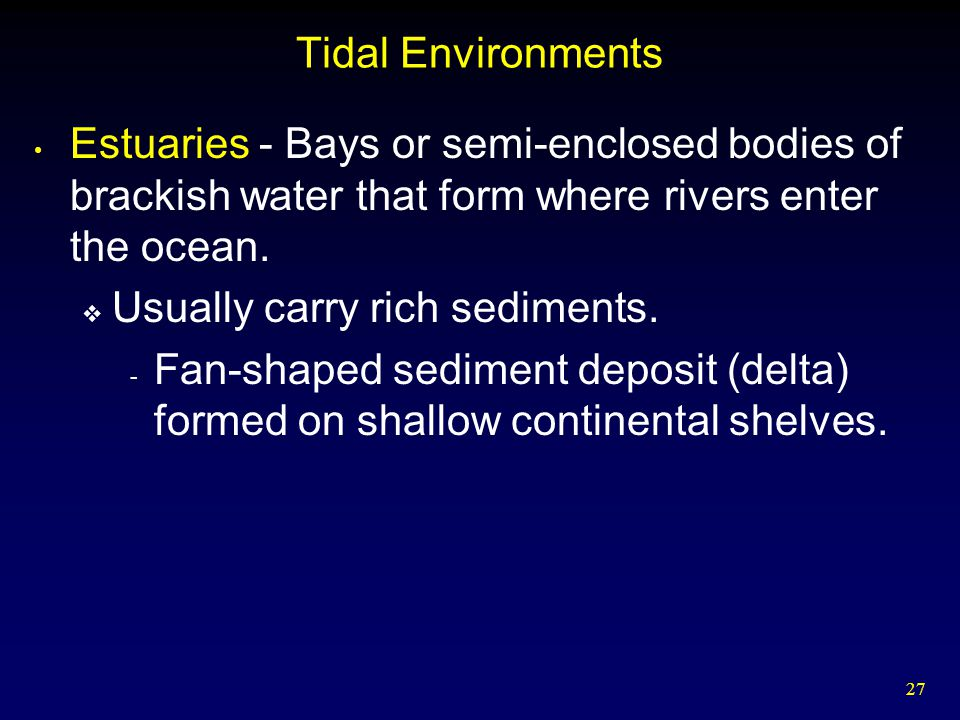 27 Tidal Environments Estuaries - Bays or semi-enclosed bodies of brackish water that form where rivers enter the ocean.  Usually carry rich sediment