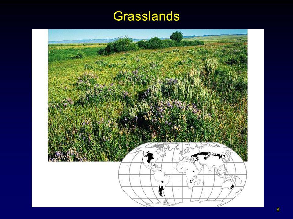 8 Grasslands