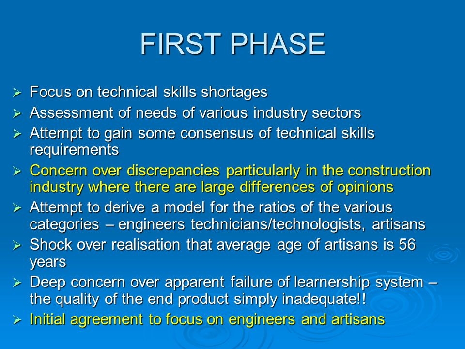 FIRST PHASE  Focus on technical skills shortages  Assessment of needs of various industry sectors  Attempt to gain some consensus of technical skil