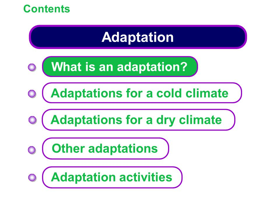 Adaptation Contents What is an adaptation? Adaptations for a cold climate Other adaptations Adaptation activities Adaptations for a dry climate