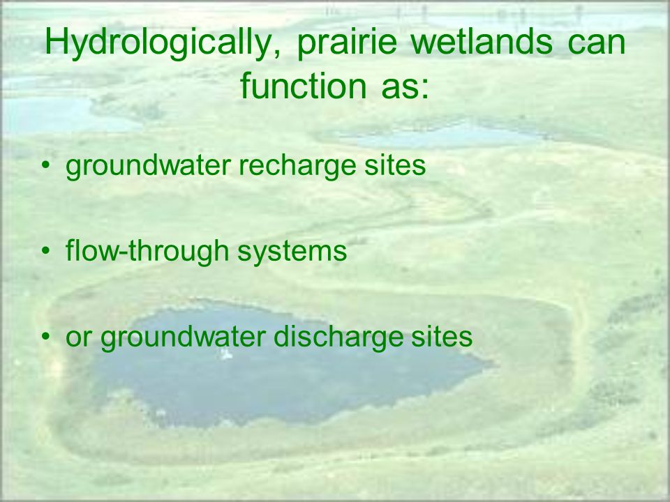 Hydrologically, prairie wetlands can function as: groundwater recharge sites flow-through systems or groundwater discharge sites