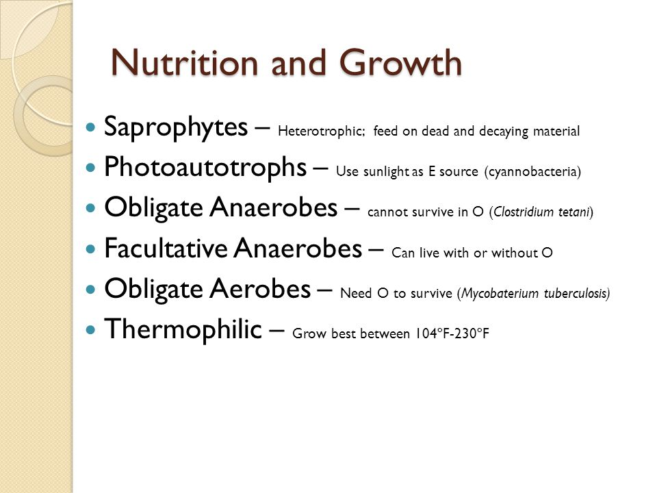 Nutrition and Growth Saprophytes – Heterotrophic; feed on dead and decaying material Photoautotrophs – Use sunlight as E source (cyannobacteria) Oblig