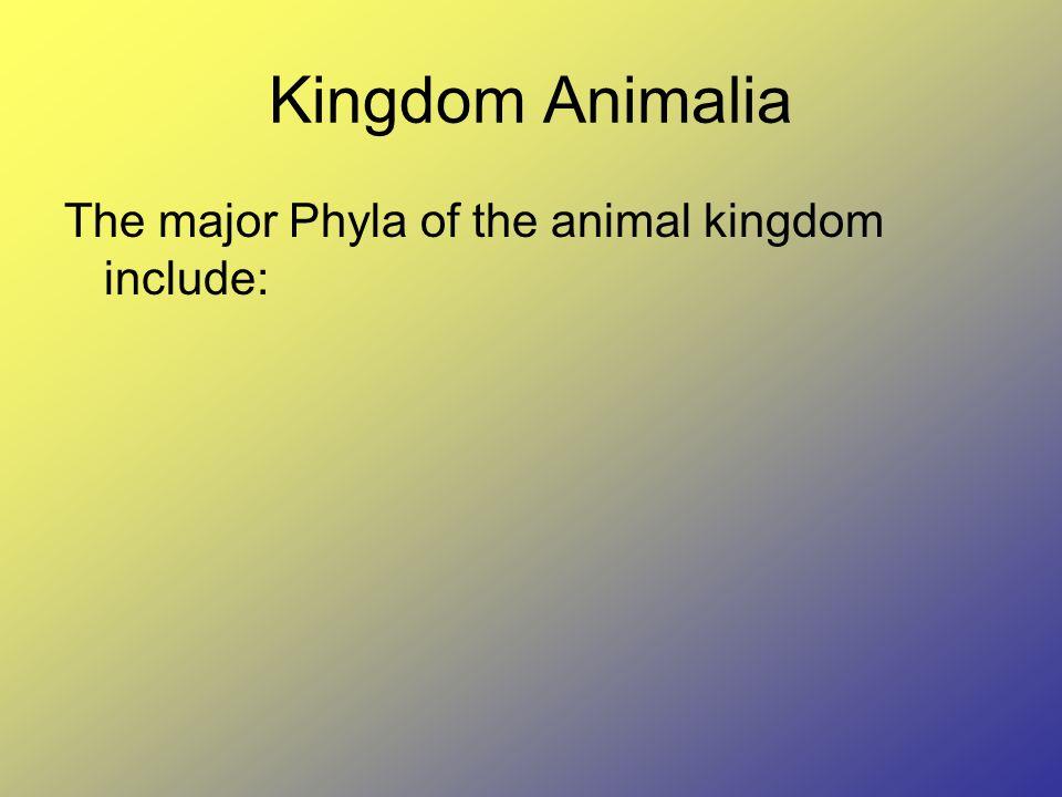 Kingdom Animalia The major Phyla of the animal kingdom include: