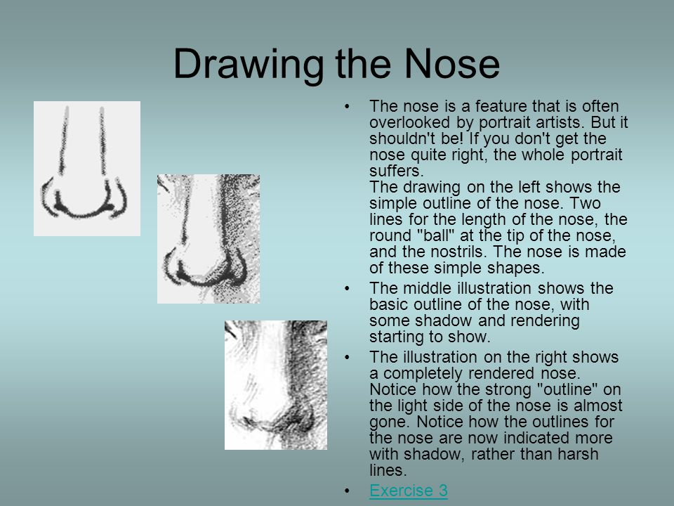 Drawing the Nose The nose is a feature that is often overlooked by portrait artists. But it shouldn't be! If you don't get the nose quite right, the w
