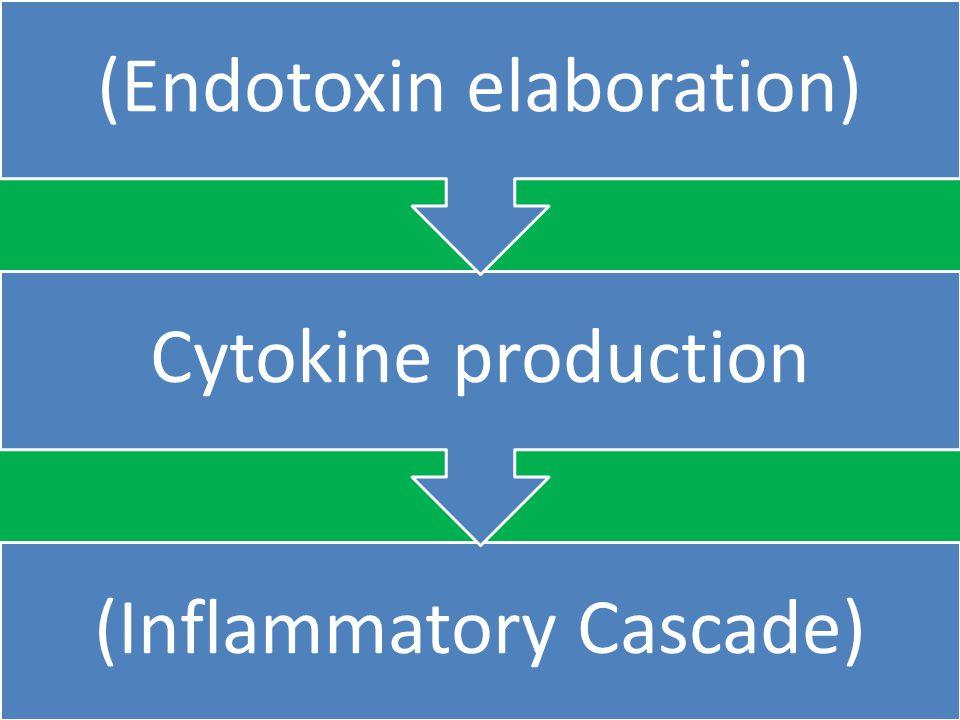 (Inflammatory Cascade) Cytokine production (Endotoxin elaboration)