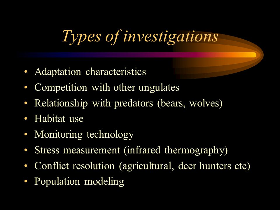 Types of investigations Adaptation characteristics Competition with other ungulates Relationship with predators (bears, wolves) Habitat use Monitoring technology Stress measurement (infrared thermography) Conflict resolution (agricultural, deer hunters etc) Population modeling
