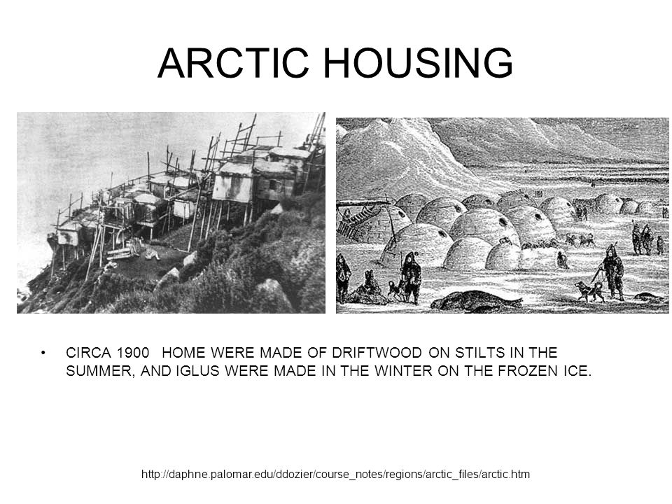 ARCTIC HOUSING CIRCA 1900 HOME WERE MADE OF DRIFTWOOD ON STILTS IN THE SUMMER, AND IGLUS WERE MADE IN THE WINTER ON THE FROZEN ICE. http://daphne.palo