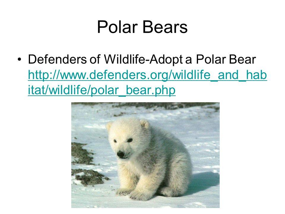 Polar Bears Defenders of Wildlife-Adopt a Polar Bear http://www.defenders.org/wildlife_and_hab itat/wildlife/polar_bear.php http://www.defenders.org/w
