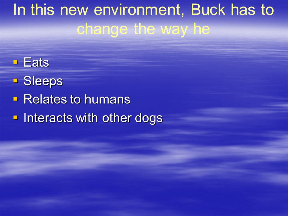 In this new environment, Buck has to change the way he  Eats  Sleeps  Relates to humans  Interacts with other dogs