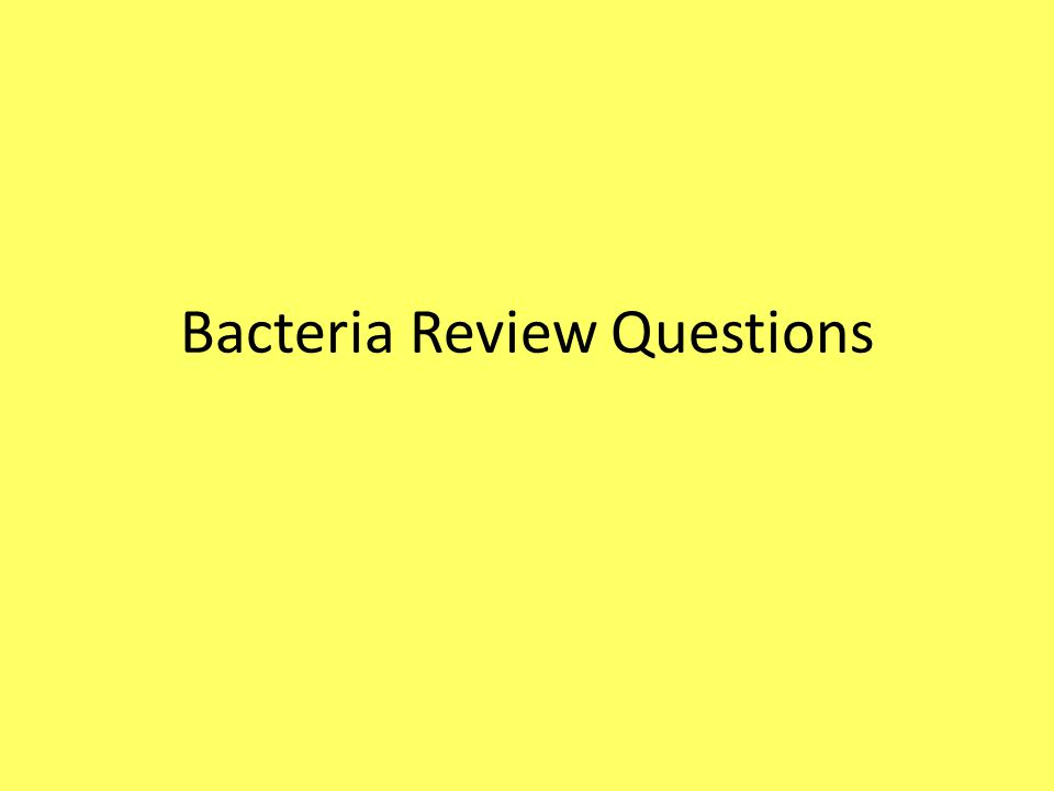 Bacteria Review Questions