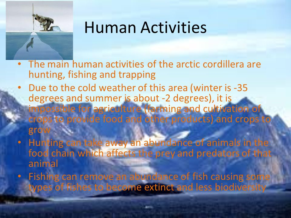 Human Activities The main human activities of the arctic cordillera are hunting, fishing and trapping Due to the cold weather of this area (winter is -35 degrees and summer is about -2 degrees), it is impossible for agriculture (farming and cultivation of crops to provide food and other products) and crops to grow Hunting can take away an abundance of animals in the food chain which affects the prey and predators of that animal Fishing can remove an abundance of fish causing some types of fishes to become extinct and less biodiversity