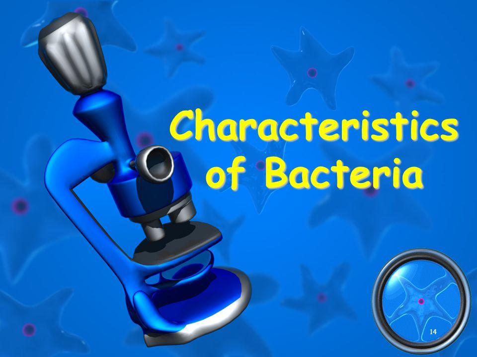 14 Characteristics of Bacteria