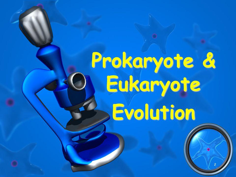 2 Prokaryote & Eukaryote Evolution