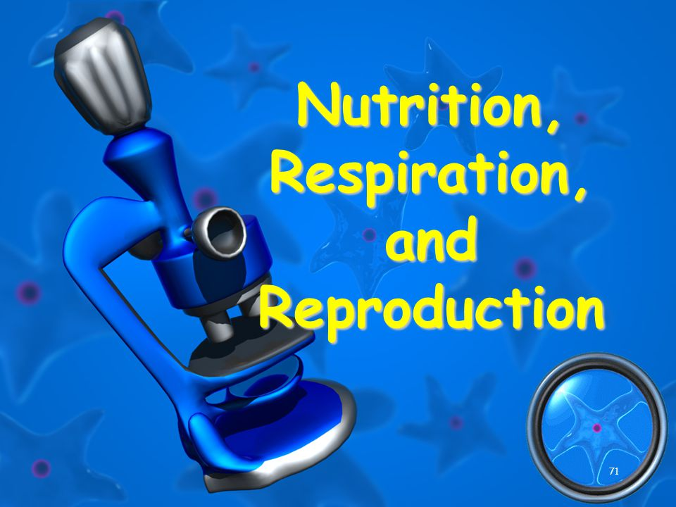 71 Nutrition, Respiration, and Reproduction