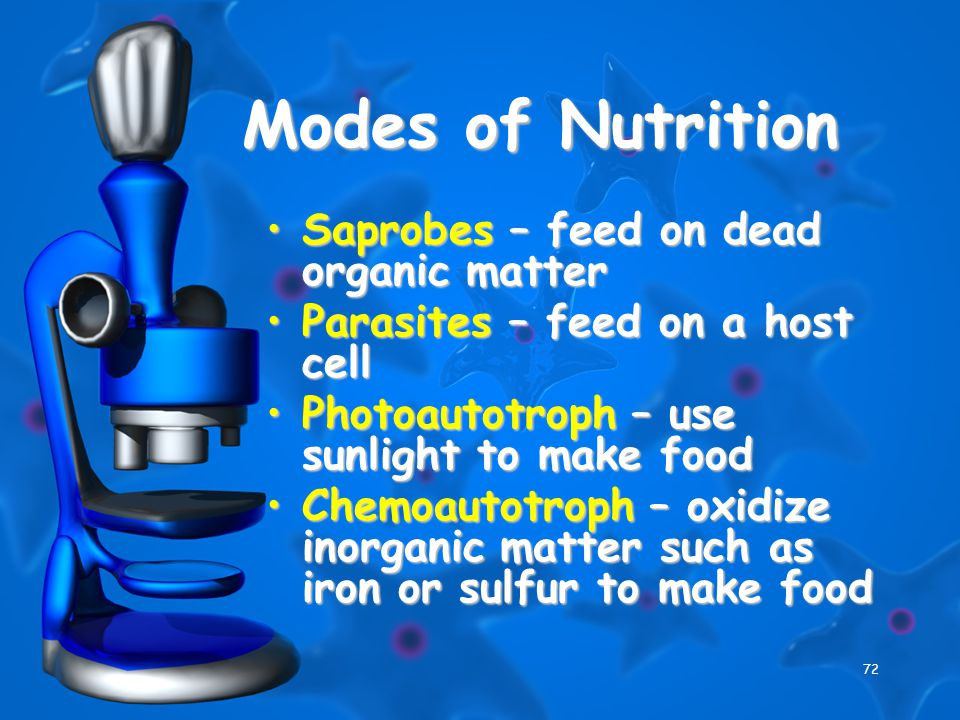 72 Modes of Nutrition Saprobes – feed on dead organic matterSaprobes – feed on dead organic matter Parasites – feed on a host cellParasites – feed on