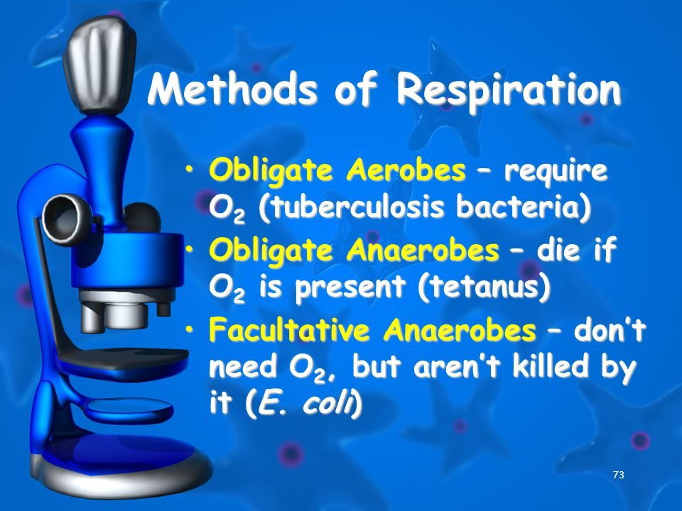 73 Methods of Respiration Obligate Aerobes – require O 2 (tuberculosis bacteria)Obligate Aerobes – require O 2 (tuberculosis bacteria) Obligate Anaero