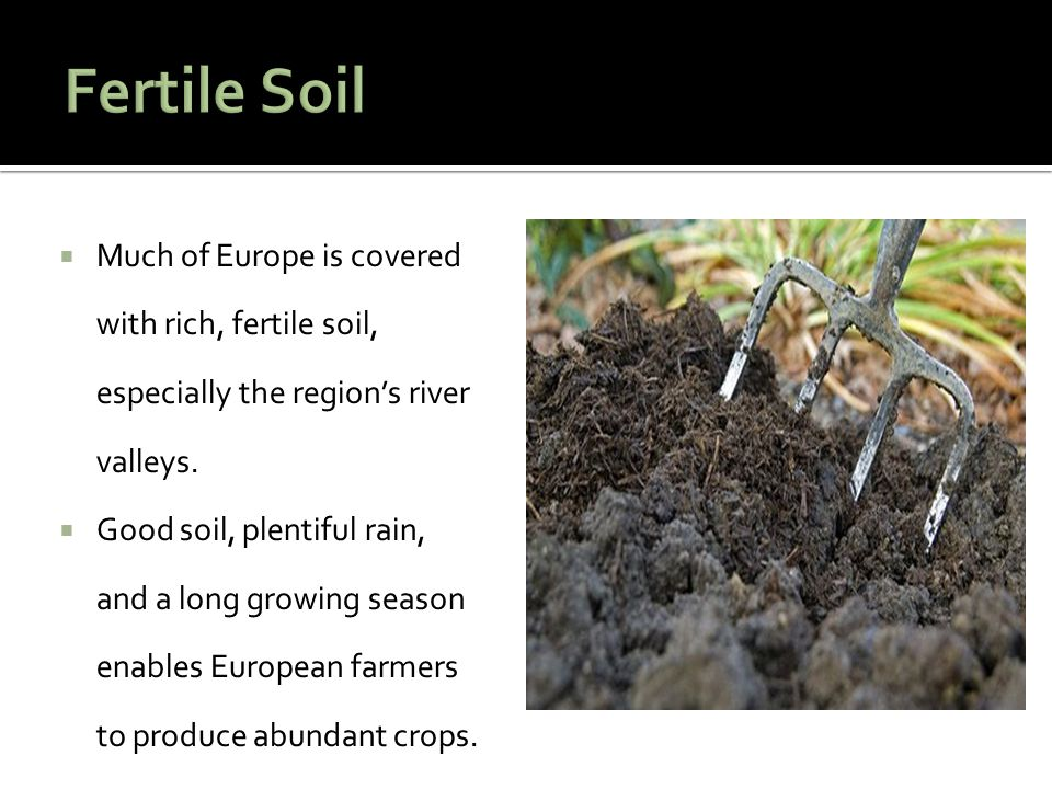  Much of Europe is covered with rich, fertile soil, especially the region's river valleys.  Good soil, plentiful rain, and a long growing season ena