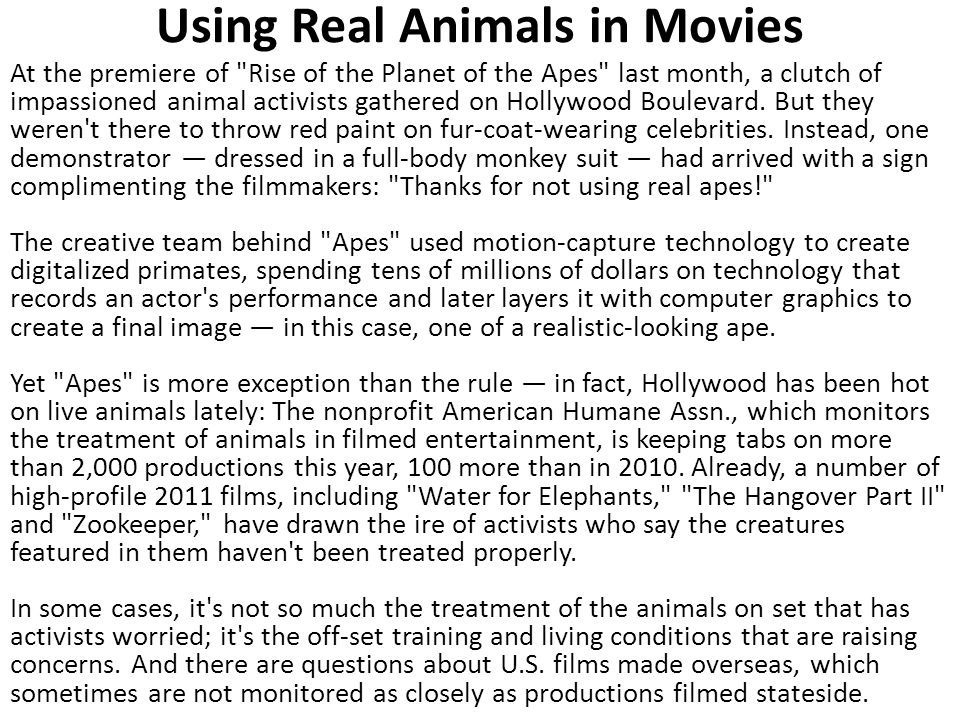 Using Real Animals in Movies At the premiere of