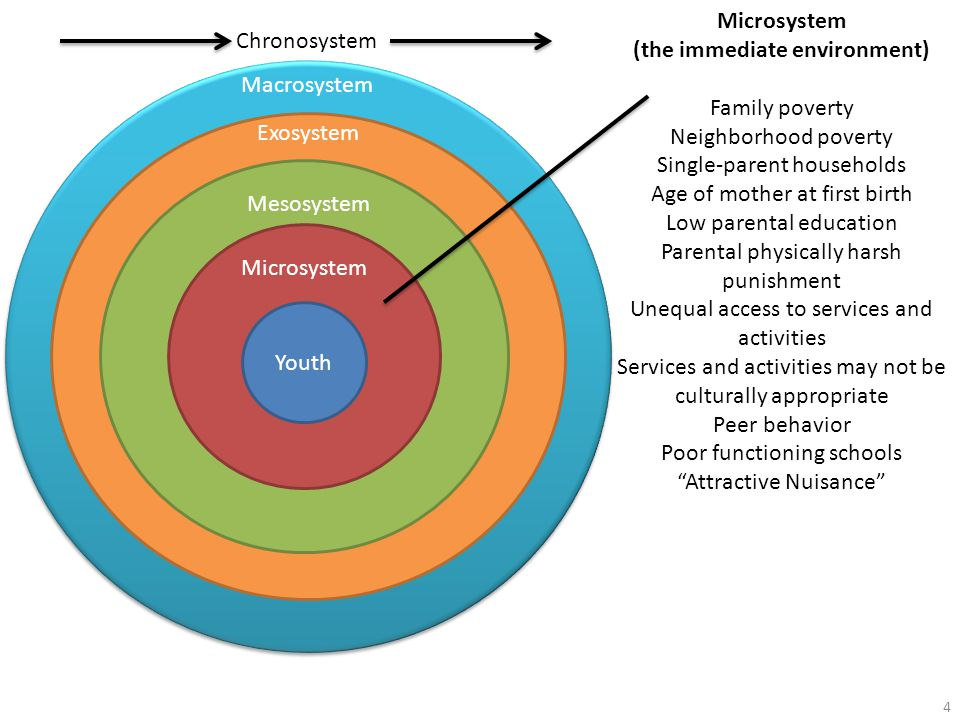 Macrosystem Exosystem MesosystemMicrosystem Youth Chronosystem Microsystem (the immediate environment) Family poverty Neighborhood poverty Single-parent households Age of mother at first birth Low parental education Parental physically harsh punishment Unequal access to services and activities Services and activities may not be culturally appropriate Peer behavior Poor functioning schools Attractive Nuisance 4