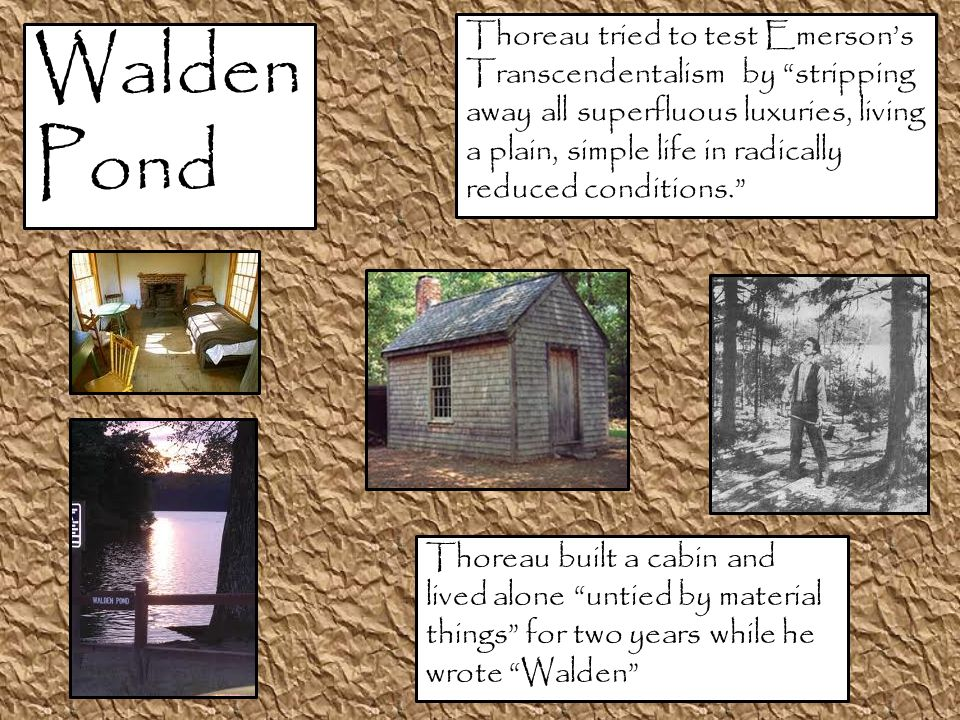 Walden Pond Thoreau built a cabin and lived alone untied by material things for two years while he wrote Walden Thoreau tried to test Emerson's Transcendentalism by stripping away all superfluous luxuries, living a plain, simple life in radically reduced conditions.