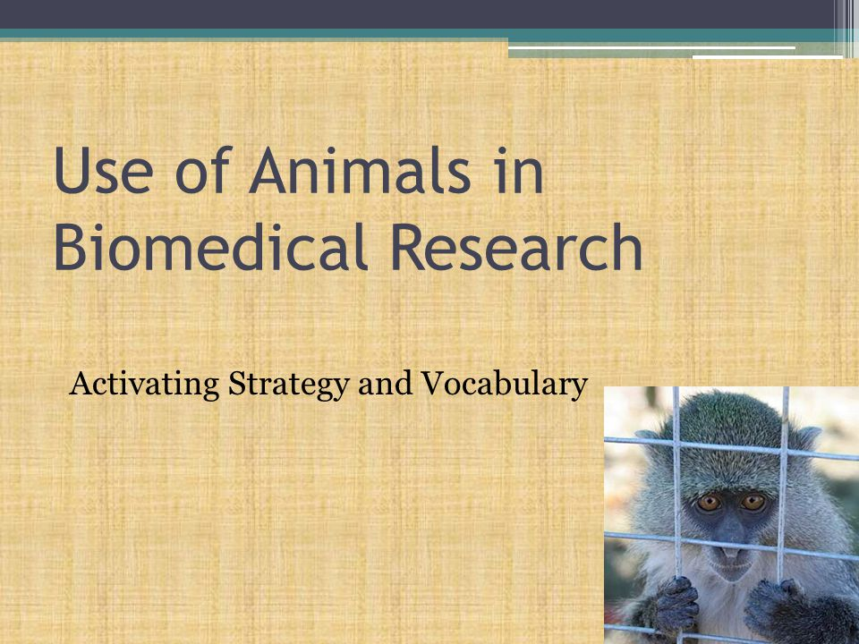 Use of Animals in Biomedical Research Activating Strategy and Vocabulary