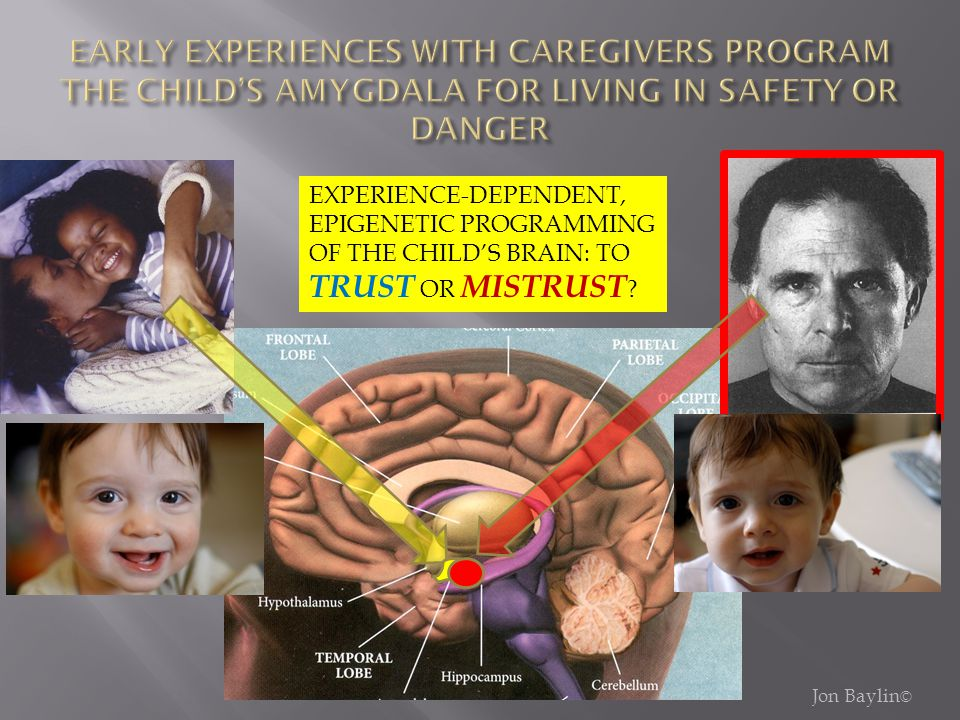 EXPERIENCE-DEPENDENT, EPIGENETIC PROGRAMMING OF THE CHILD'S BRAIN: TO TRUST OR MISTRUST ?